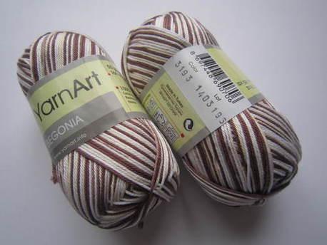Main begonia melange 3193